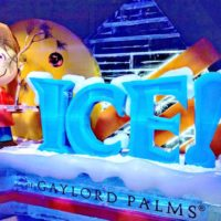 ice-gaylord-palms