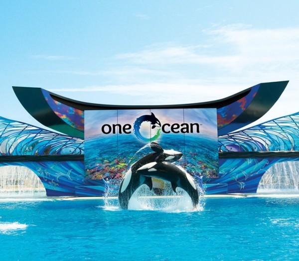 013_One Ocean SeaWorld