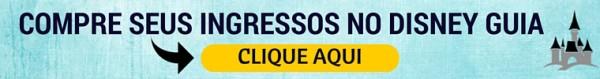 COMPRE SEUS INGRESSOS NO DISNEY GUIA (2)